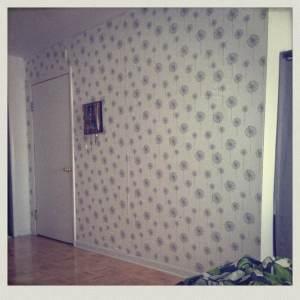 wallpaper!